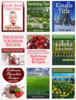 Thumbnail Kindle book templates in .psd format